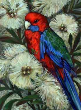 Rosellabird2